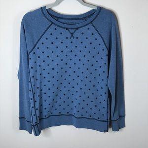Blue Polka Eddie Bauer Sweater Sz S